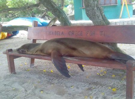 Francesca at Galapagos Islands – Photos